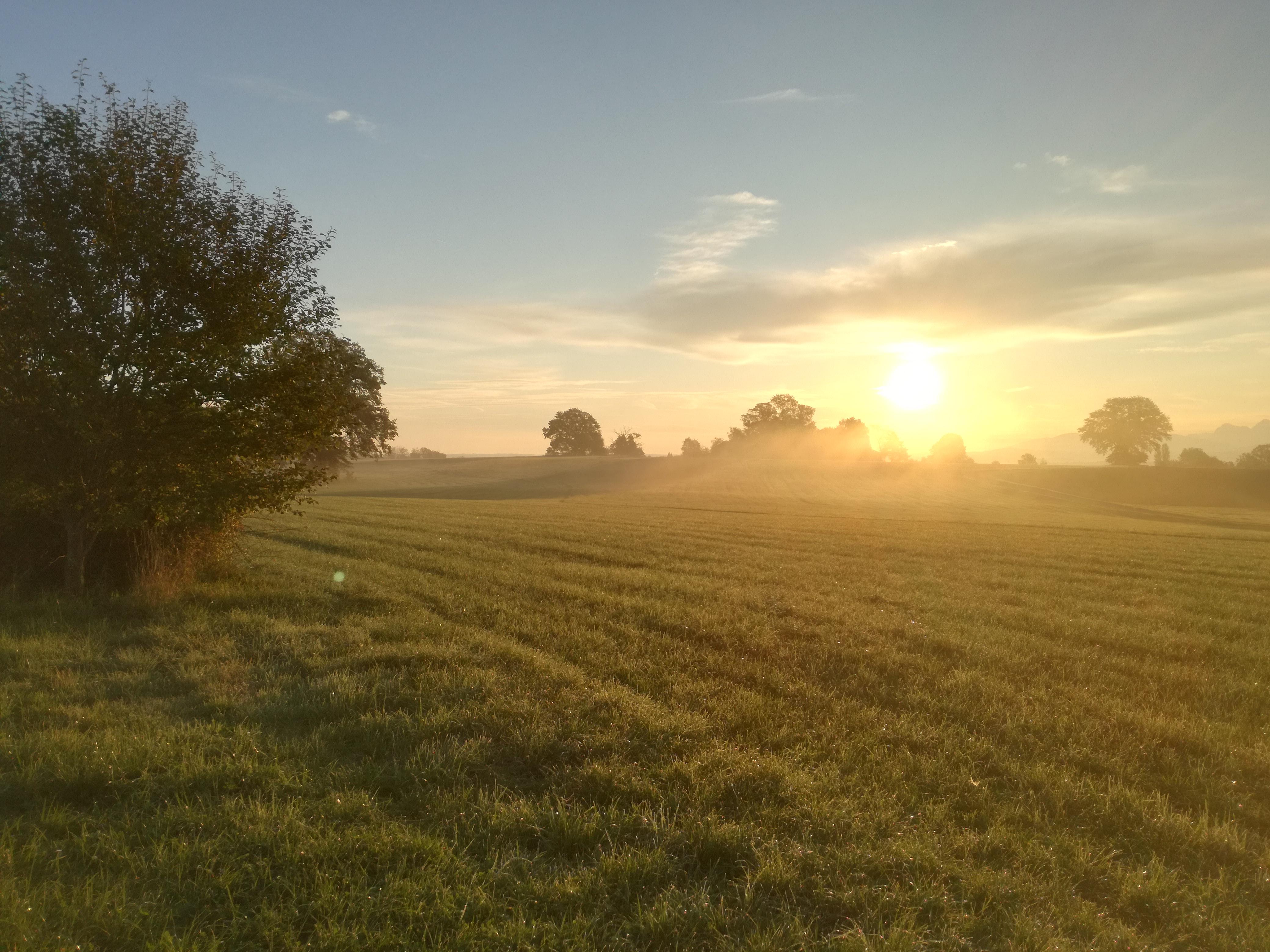 Herbststimmung am Morgen