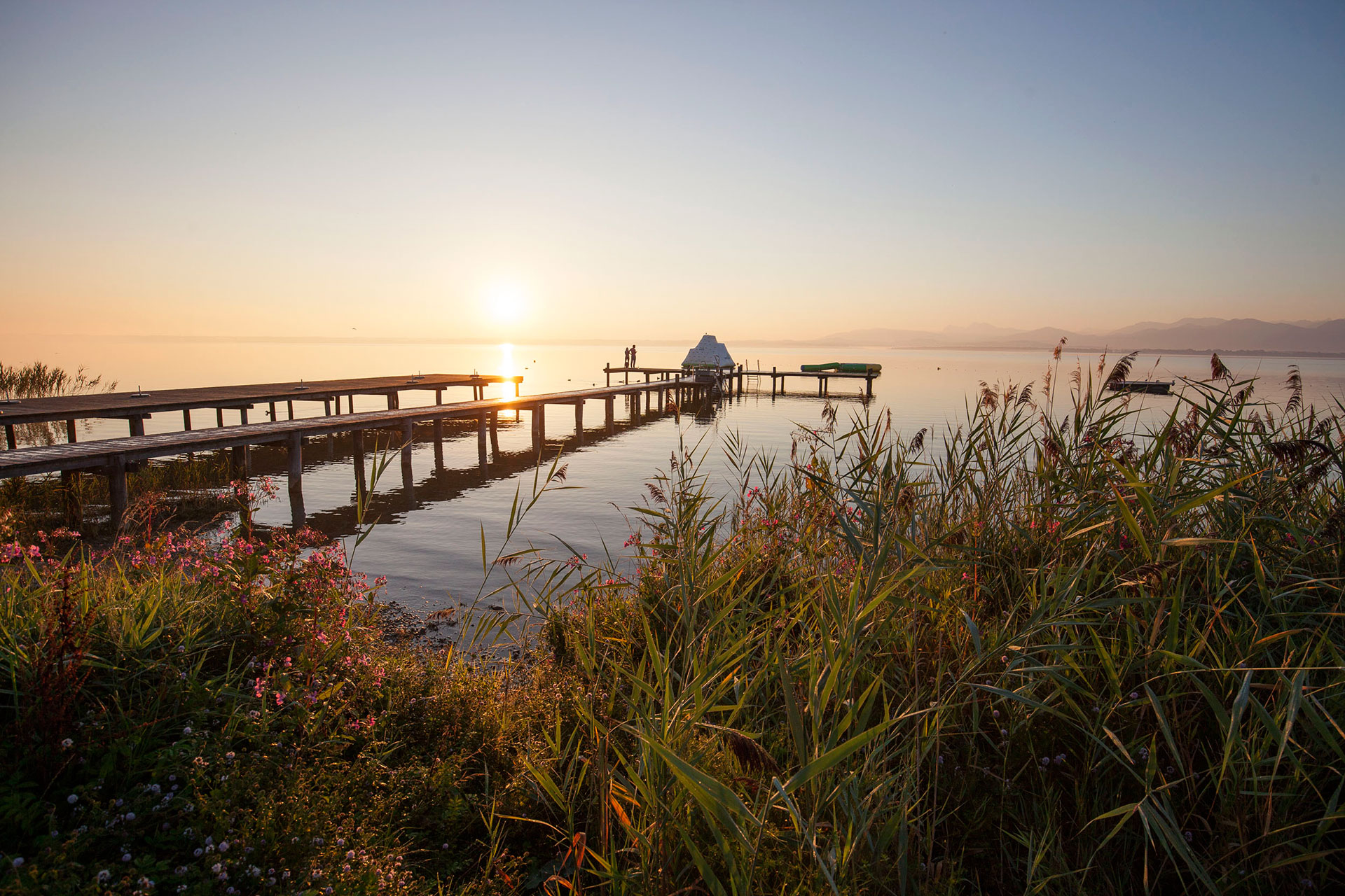 Sommermorgen (Foto © Ulli Seer)