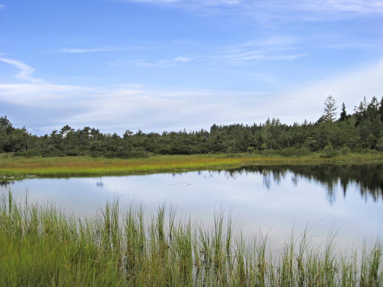 Der 'Grundlose See' im Lienzinger Moos (Foto: © Ulli Reiter)