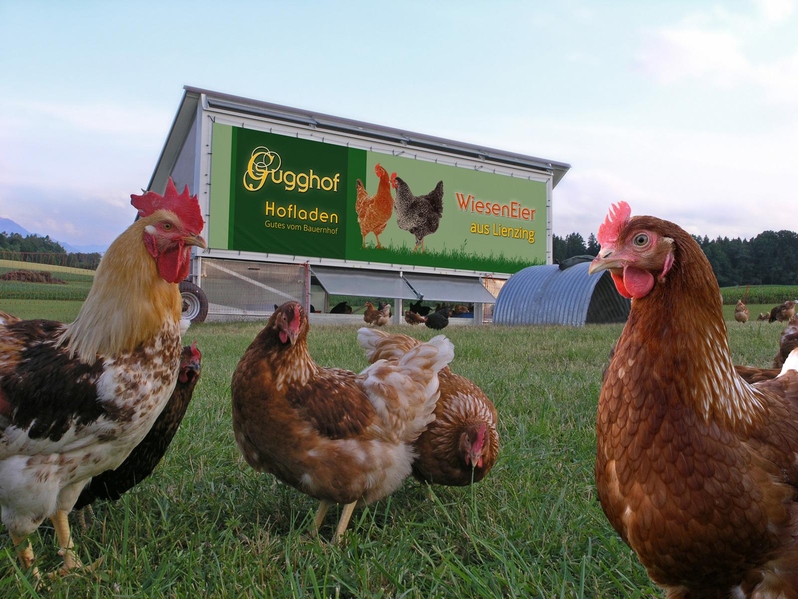 Das Hühnermobil des Gugghofes in Lienzing (Foto: © Uli Reiter)